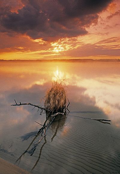 "©Darwin Wiggett - ""A Real Alberta Beach"""