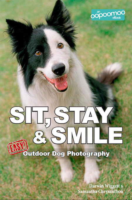Books about photography darwin wiggett we are very happy to announce our first oopoomoo how to photography ebook sit stay and smile easy outdoor dog photography there will be lots more new fandeluxe PDF